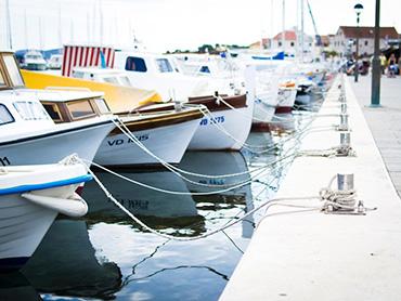 Cruises & Speedboats