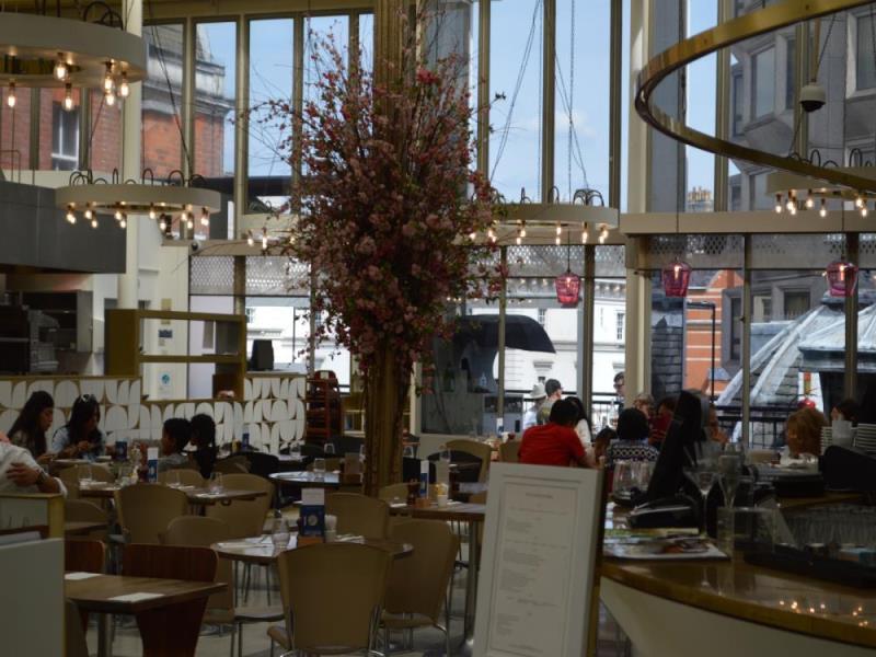 Café and Terrace