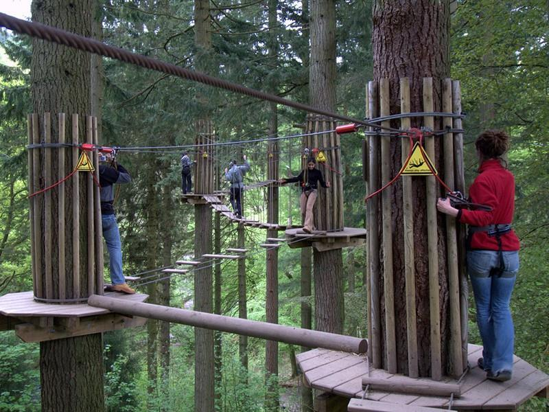Tree Top Adventure Go Ape